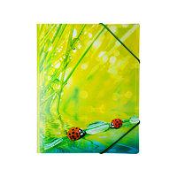Папка на резинке Ladybird, А4, 550 мкм, синяя