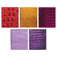 """Тетрадь А5, 48 листов в клетку """"Proff. Scale"""", офсет/цветной мелованный картон+ВД-лак/спираль."""