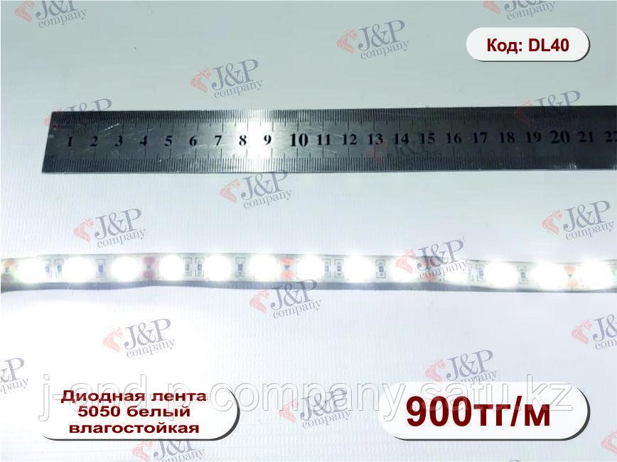 Светодиодная  лента влагостойкая, 1см, диод 5050 белый