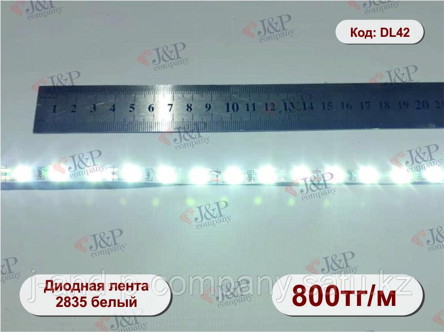 Светодиодная  лента, 0,8см, диод 2835 белый