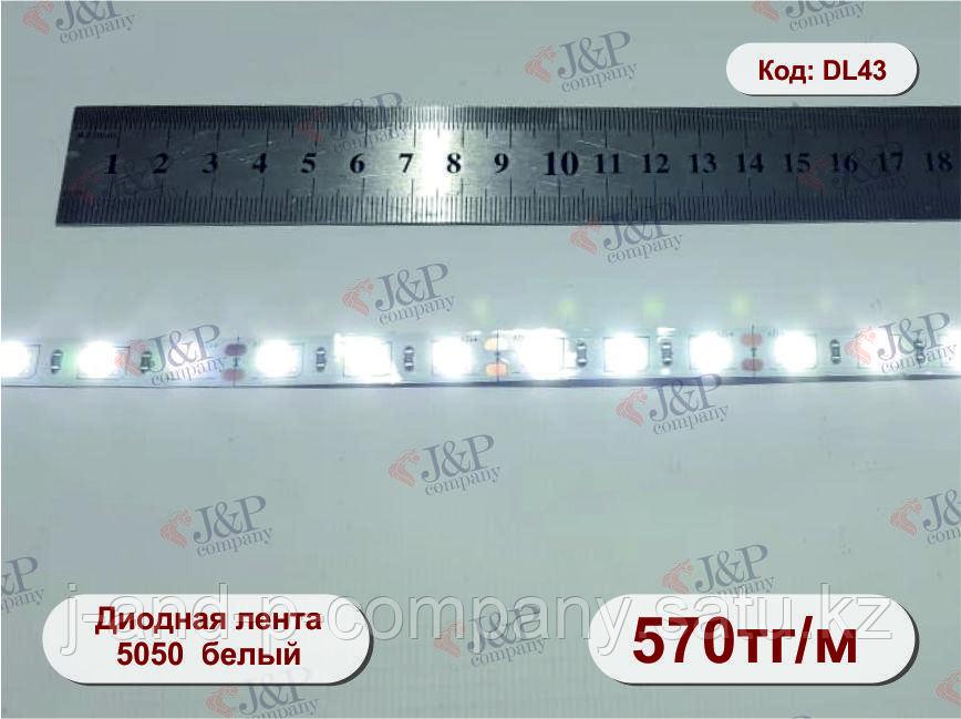 Светодиодная  лента, 1см, диод 5050 белый