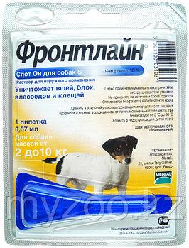 Фронтлайн Спот Он для собак от 2-10 кг, 0,67 мл.