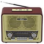 Радиоприемник портативный Ritmix RPR-088 (Радиоприемник  портативный Ritmix RPR-088 BLACK)