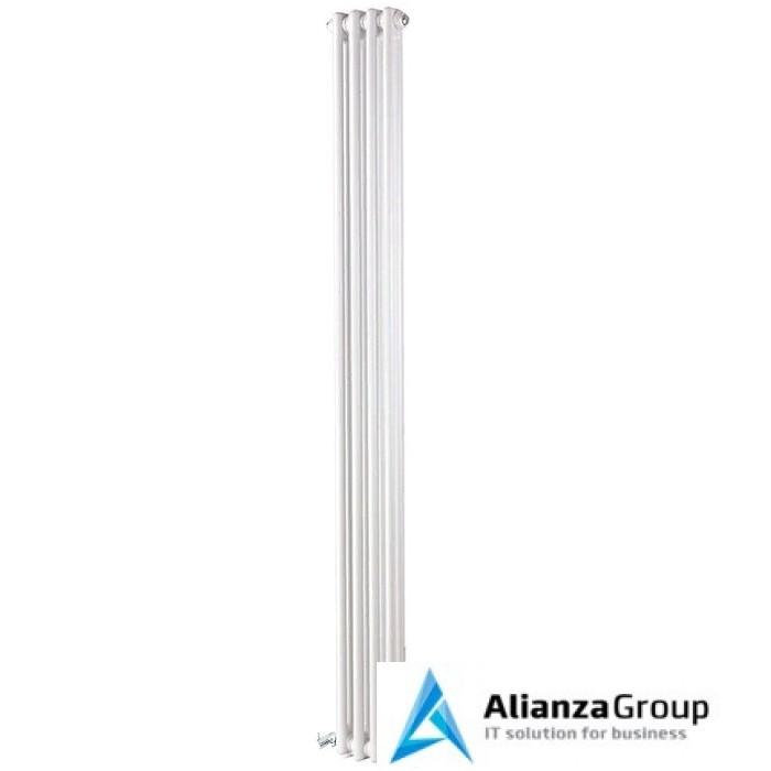 Стальной трубчатый радиатор 2-колончатый IRSAP TESI 21800/04 T30
