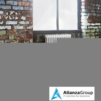 Стальной трубчатый радиатор 2-колончатый Arbonia 2026/30 N12 3/4 RAL 9016