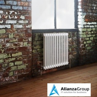 Стальной трубчатый радиатор 2-колончатый Arbonia 2060/26 N12 3/4 RAL 9016