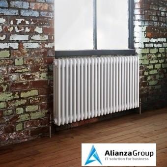 Стальной трубчатый радиатор 3-колончатый Arbonia 3055/24 N12 3/4 RAL 9016