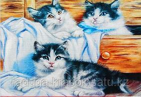 """Картины стразами на подрамнике """"Игривые котята"""" 30х40 см  СТРАЗЫ КРУГЛЫЕ"""