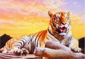 """Картины стразами на подрамнике """"Величественный тигр"""" 30х40 см  СТРАЗЫ КРУГЛЫЕ"""