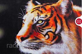 """Картины стразами на подрамнике """"Молодой тигр"""" 30х40 см  СТРАЗЫ КРУГЛЫЕ"""