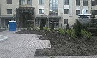 """ЖК """"Dostyk Residence"""" ландшафтный дизайн от Alex Green"""