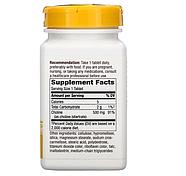 Nature's Way, Холин, 500 мг, 100 таблеток, фото 2