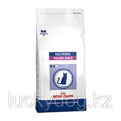 ROYAL CANIN Сухой корм для кастрированных котов Neutered Young Male 10 кг