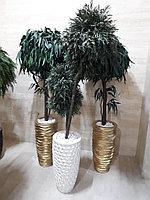 Стабилизированные деревья и растения