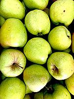 Яблоко зеленое (сорт Голден) 1 кг