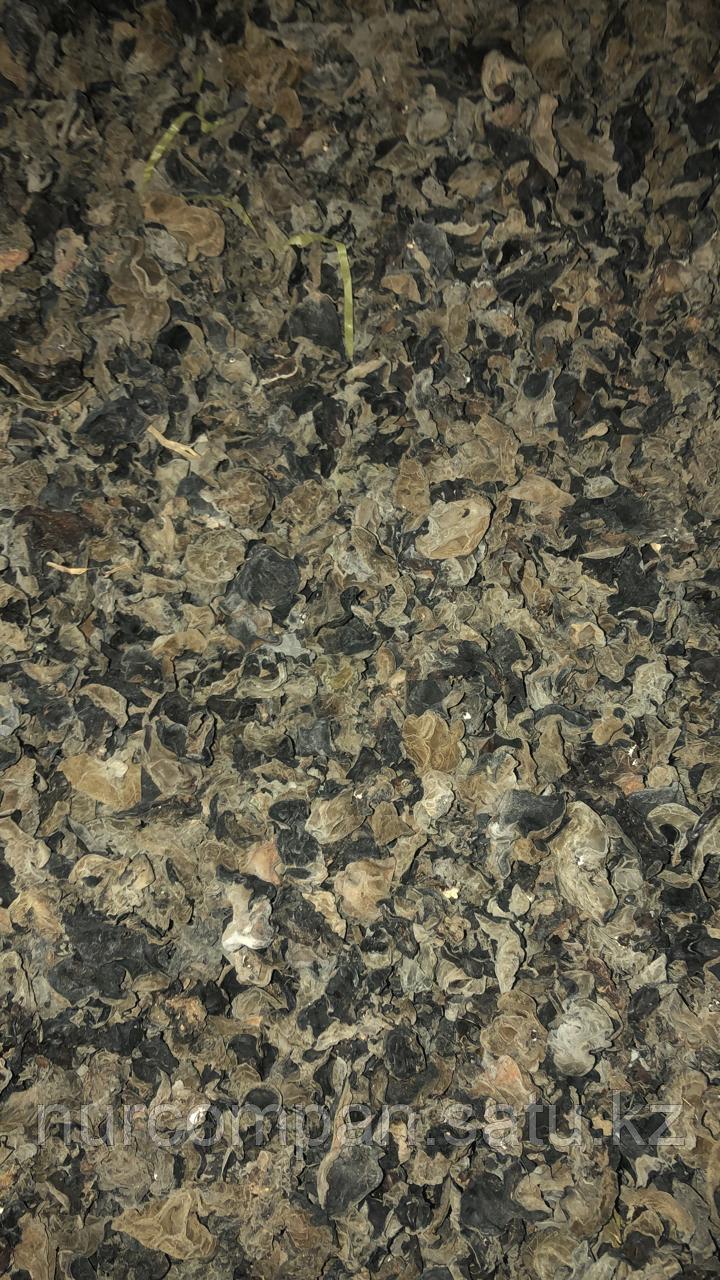Древесные грибы (средний сорт)