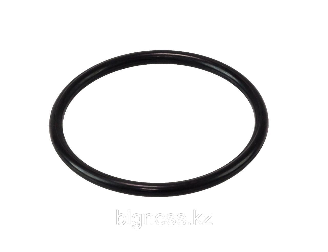 Прокладка кольцевая №46 (№04851290) для расходомер LPG Yenen YGM пропан-бутан