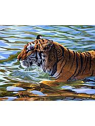 """Картины стразами на подрамнике """"Плывущий тигр"""" 30х40 см  СТРАЗЫ КРУГЛЫЕ"""
