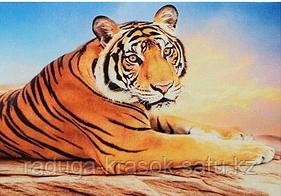 "Картины стразами на подрамнике ""Тигр на закате"" 30х40 см"