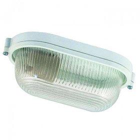 Светильник 1401 Банник НПП 03-60-021 IP65 овал мал. матовый/корпус белый ГИ 02410