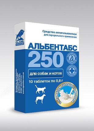 Альбентабс таблетки №10 и 30 со вкусом топленного молока, фото 2