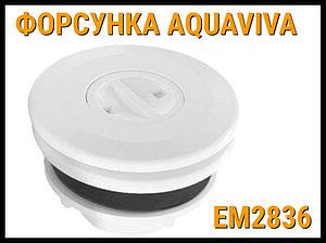 Форсунка стеновая для пылесоса Aquaviva EM2836 в бассейне