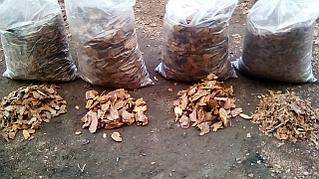 Кора лиственницы средняя фракция 2-6 см.