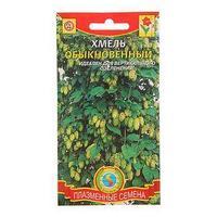 Семена цветов Хмель, обыкновенный, Мн., 4 шт (комплект из 10 шт.)