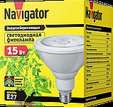 Лампа NLL-FITO-PAR38-15-230-E27 61 201 Navigator, фото 2