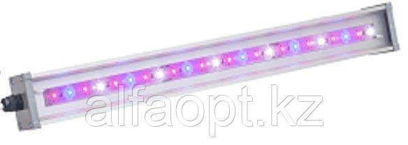 Светильник для основного освещения теплиц и досветки растений LINE-F-055-90-50 (МикропризмаБолт/скоба)