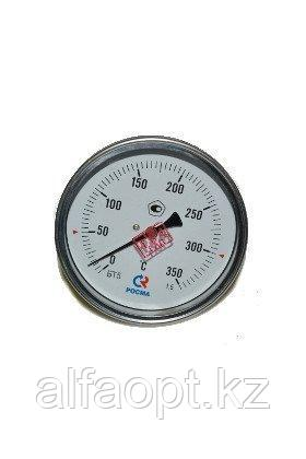 Термометр БТ31.21 (0-160)