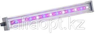 Светильник для основного освещения теплиц и досветки растений LINE-F-055-55-50 (МикропризмаБолт/скоба)