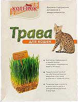 Травка для кошек - семена для проращивания Котенок