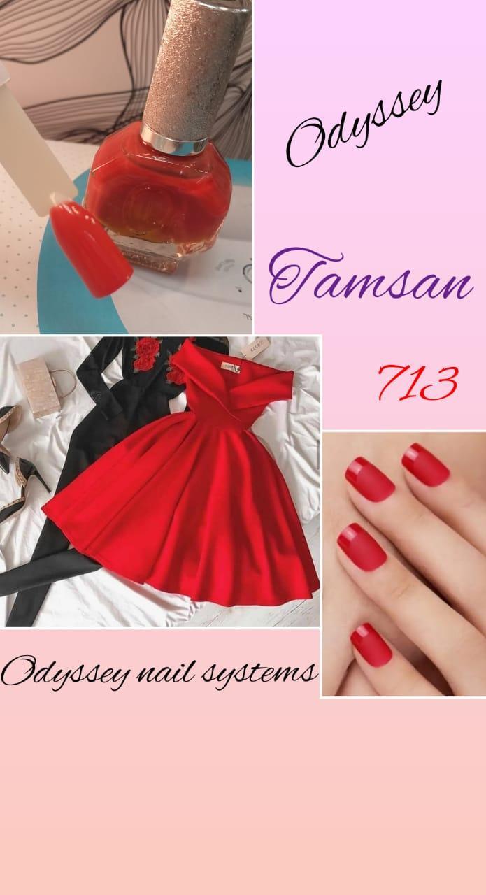 Лак для ногтей Odyssey Nails Systems #713