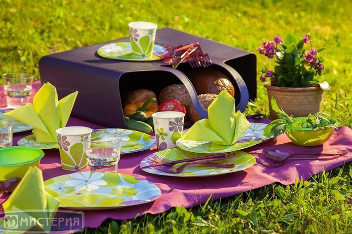 """Набор для пикника, """"Дейзи"""", на 10 персон из 73 предметов, фото 2"""