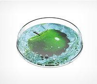 Монетница круглая RONDA, диаметр 172мм, высота 24 мм