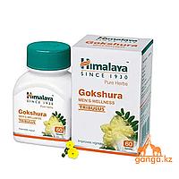 Гокшура Омолаживающий тоник для почек (Gokshura HIMALAYA), 60 таб.
