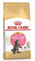 Maine Coon Kitten. Royal canine. Корм для котят породы Мейн-Кун до 15 месяцев. 4 кг/уп