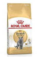British Shorthair Adult. Royal canine. Корм для взрослых кошек породы Британская короткошестная старше 12 мес.