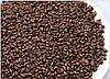 Травяной чай для очищения кишечника и токсинов в печени Кассия тора узколистная, трубчатая. 200 грам