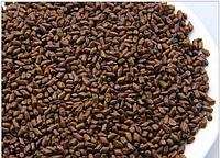 Травяной чай для очищения кишечника и токсинов в печени Кассия тора узколистная, трубчатая. 100 грам