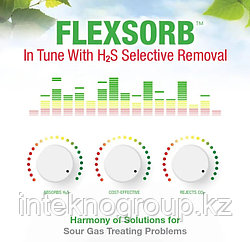Аминный раствор Flexsorb SE