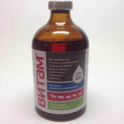 Витам 100мл Витаминно-аминокислотный комплекс, фото 2