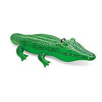 Надувная игрушка для катания верхом INTEX 58546NP Крокодильчик (168х86см, Винил)