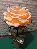 Прикроватный светильник. Роза. Creativ 2403, фото 4