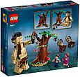 75967 Lego Harry Potter Запретный лес: Грохх и Долорес Амбридж, Лего Гарри Поттер, фото 2