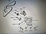 Ремень приводной ГУРа, кондиционера, генератора MITSUBISHI ASX GA2W 2011-2013, SKF, фото 3