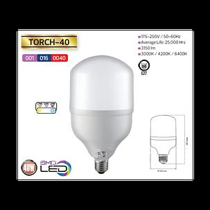 Светодиодная (LED) лампа 40W 6400K E27 для съёмки, фото 2
