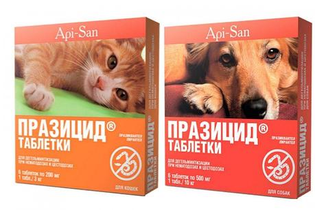 Празицид таблетки  №6 для кошек и собак  антигельминтик, фото 2