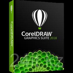 CorelDRAW Graphics Suite 2019  Windows BOX